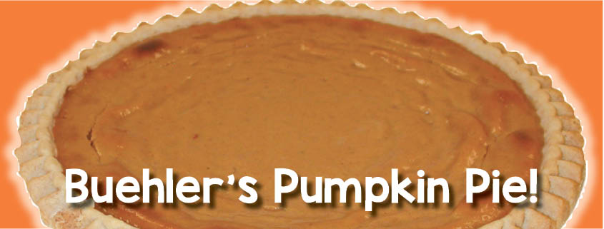blog-pumpkin-bakery-photos2